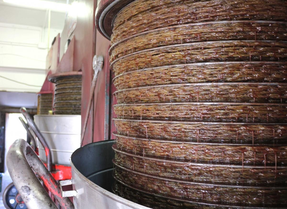 prime spremiture olive 2015