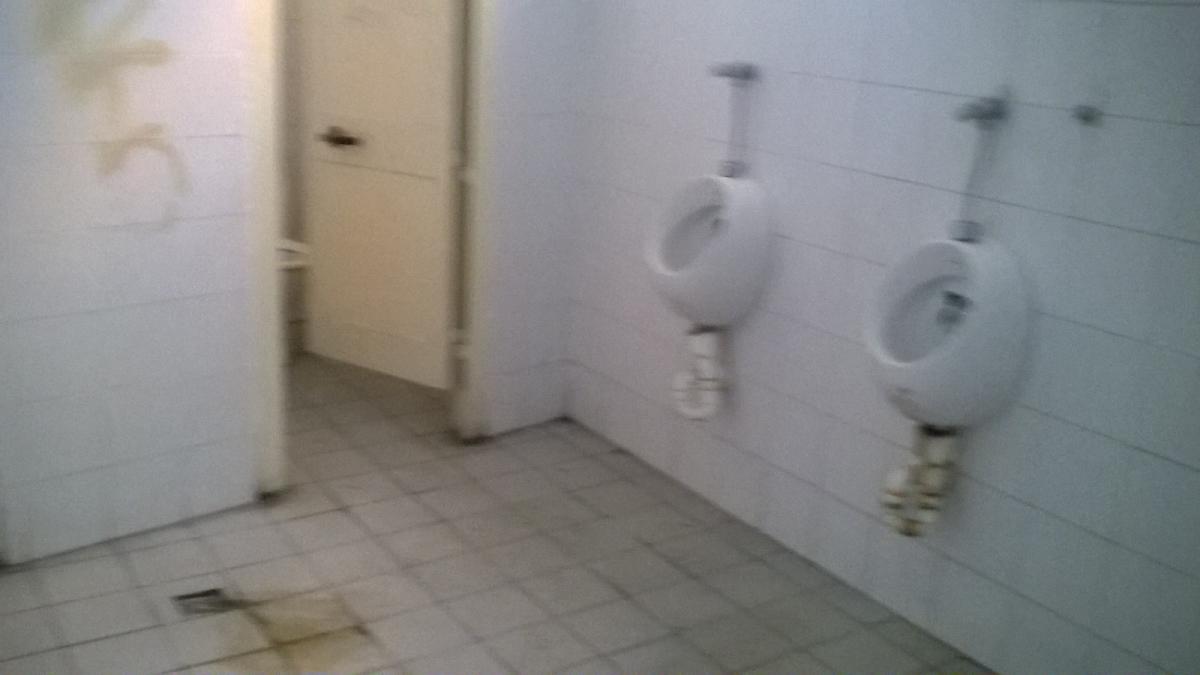 S.O.S. BAGNI PUBBLICI. TUTTI DA CHIUDERE: FUORI NORMA. Le toilette ...